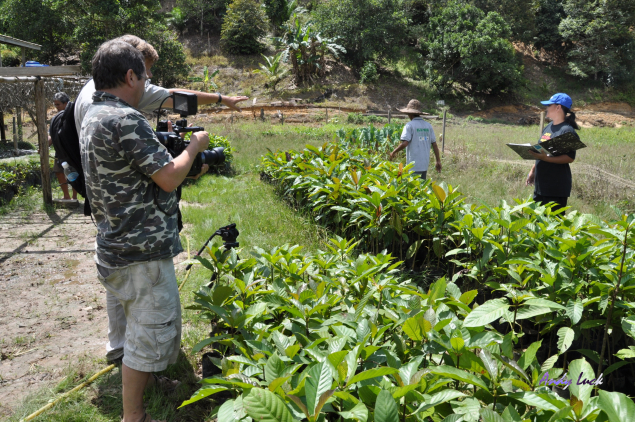 Wildopeneye filming a reforestation project in Sabah, Malaysian Borneo.